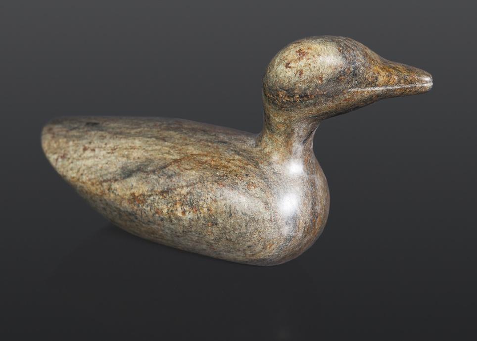 Seabird Stephen Noyes Colville