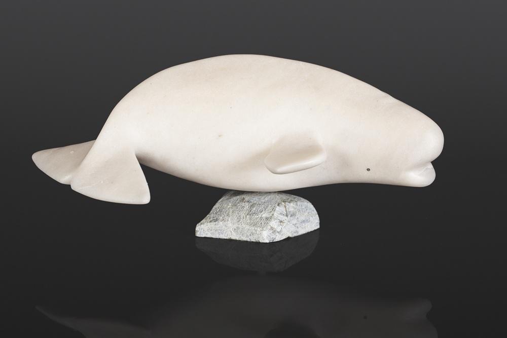 Beluga Whale Timila Pitsiulak Inuit Marble