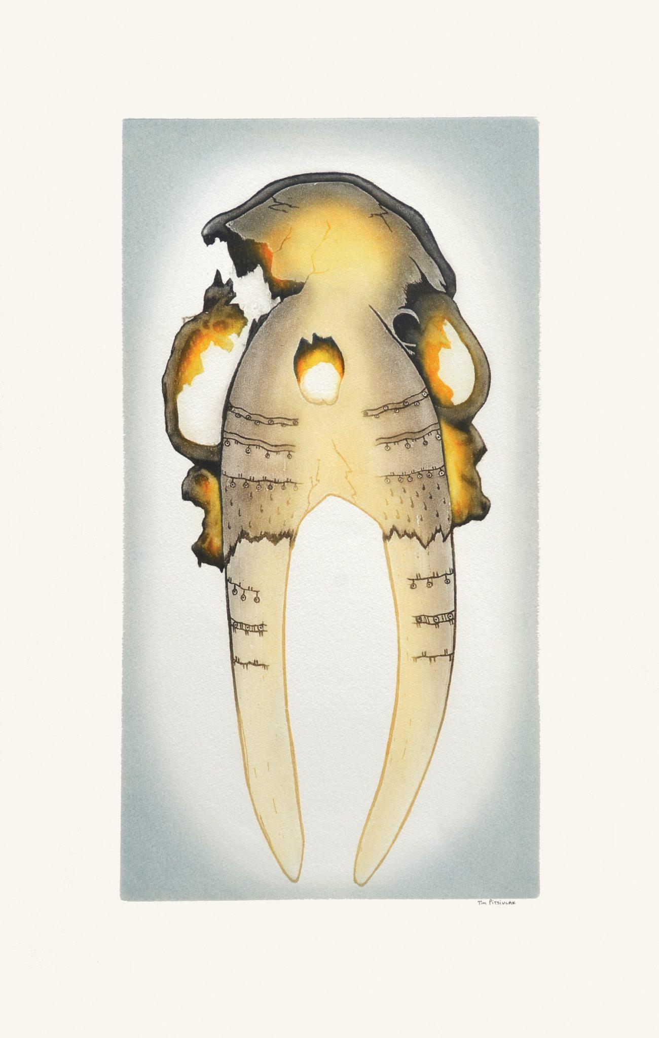 Tim Pitsiulak Ancient Walrus Skull Etching & Aquatint Cape Dorset Print Collection 2016 650