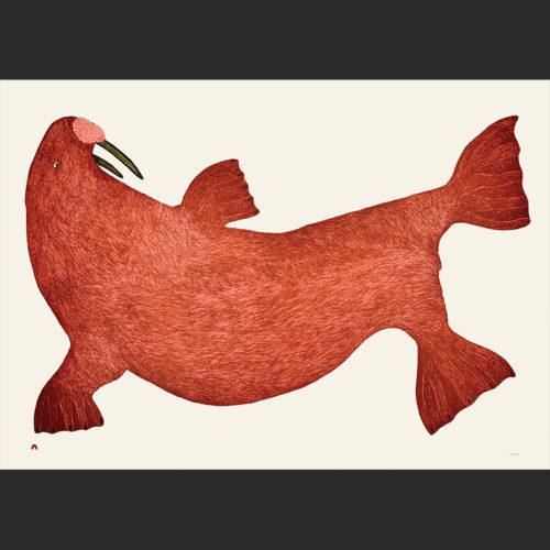 Red Walrus Tim Pitsiulak Cape dorset print collection 2016 $1120