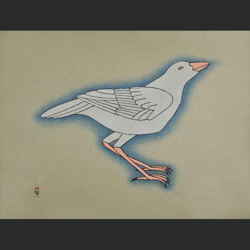 "white raven Qavavau Manumie White Raven Cape Dorset Print Collection 2015 Stonecut & Stencil 18 ½"" x 24"" $700"