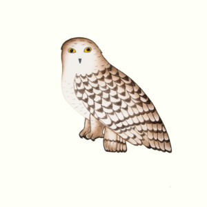 PAUOJOUNGIE SAGGIAK Noble Owl Etching, Aquatint & Hand Painting Printer: Studio PM 67 x 69.5 cm; 26 1/2 x 27 1/2 in. $560 US