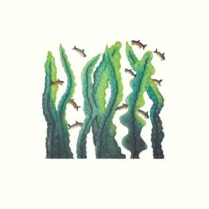 CEE POOTOOGOOK Kelp Garden Etching & Aquatint Printer: Studio PM 44.6 x 42.6 cm; 17 1/2 x 16 3/4 $360 US