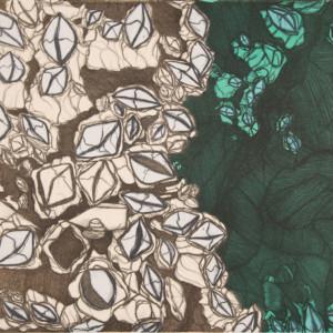 PADLOO SAMAYUALIE Barnacles Lithograph Printer: Niveaksie Quvianaqtuliaq 38 x 56.5 cm; 15 x 22 1/4 in. $480 US