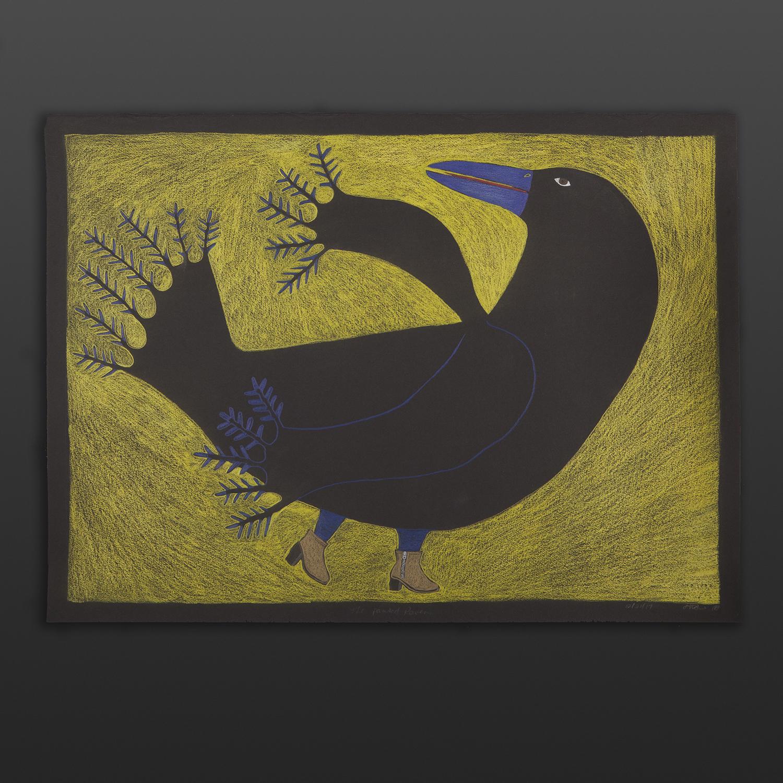 Painted Raven Ningeokuluk Teevee Inuit Graphite, colored pencil 30 x 22