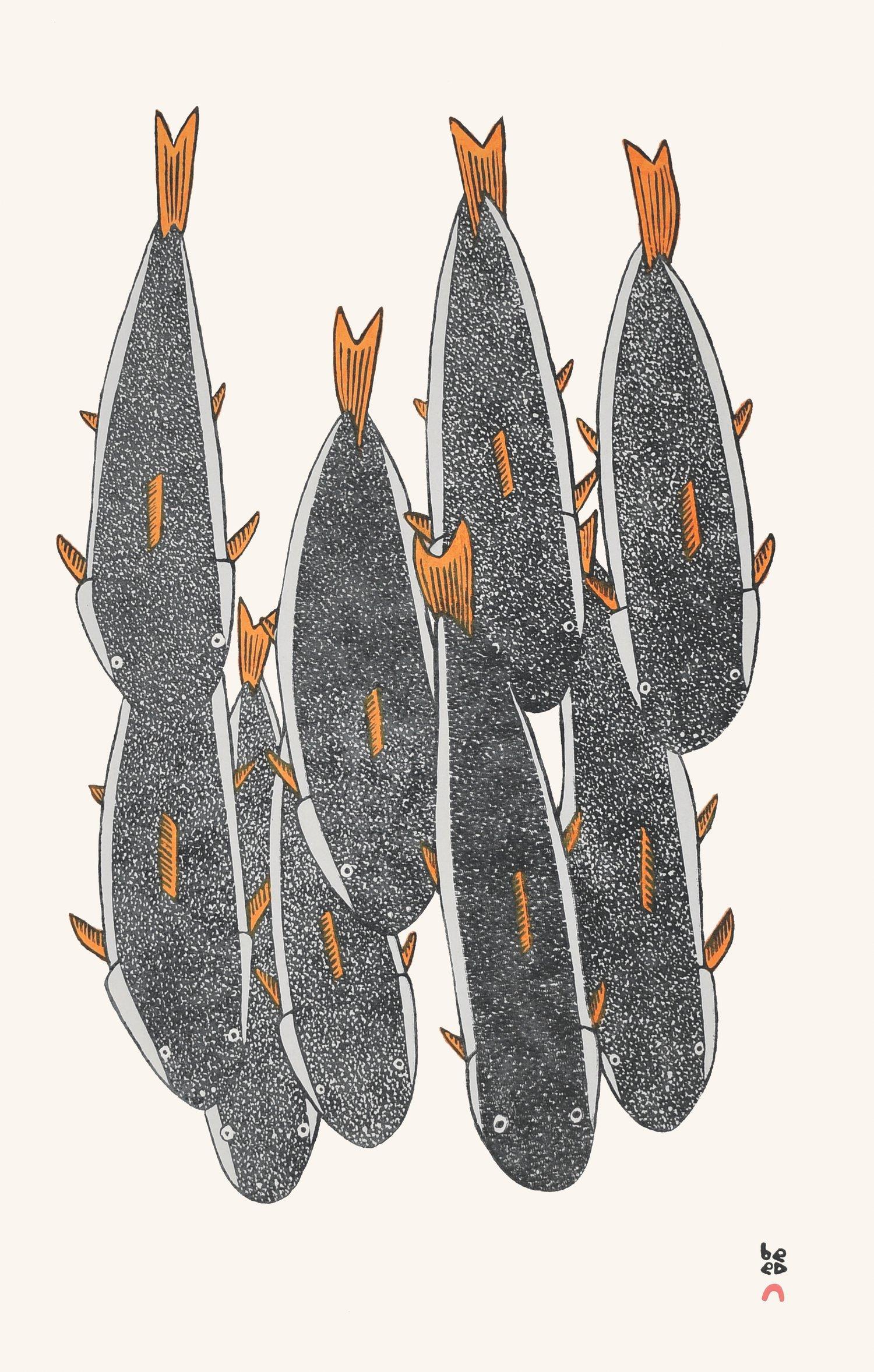 "MOSESEE MANGITAK 17. School of Char Stonecut Paper: Kizuki Kozo Natural Printer: Qavavau Manumie 59.7 x 38 cm 23 ½"" x 15"" $ 500 $400"