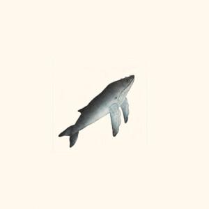 Whale Qavavau Manumi Inuit Etching & Aquatint Cape Dorset Print Collection 2020