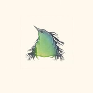 Fledgling Pitaloosie Saila Inuit Etching & Aquatint Cape Dorset Print Collection 2020