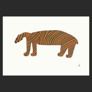 Striped Bear Saimaiyu Akesuk cape dorset