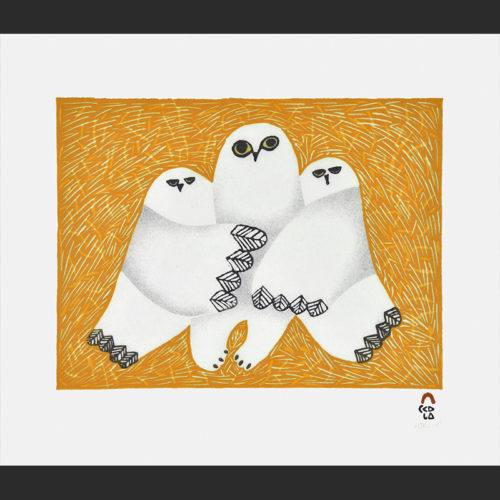 Cuddle Cape Dorset Print Collection 2015 Artist: Ningeokuluk Teevee Medium: Stonecut & Stencil Paper: Handmade Washi Kizuki Kozo White Printer: Tapaungai Niviaqsi Size: 11 x 13 inches (28 x 32.5 cm) Price: $500