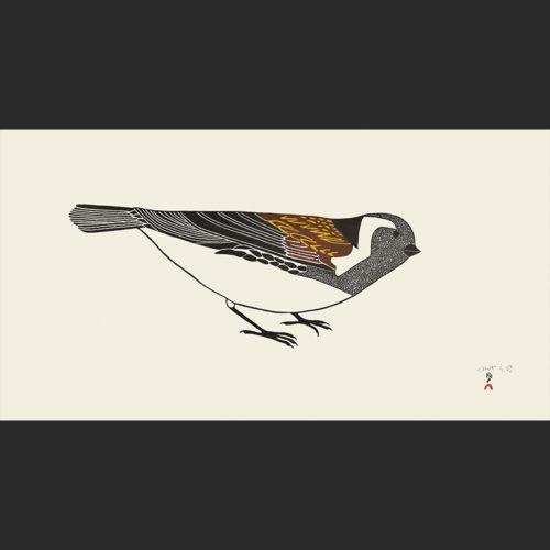 Pauojoungie Saggiai Timmiaralaaq Little Bird cape dorset print collection 2016 360