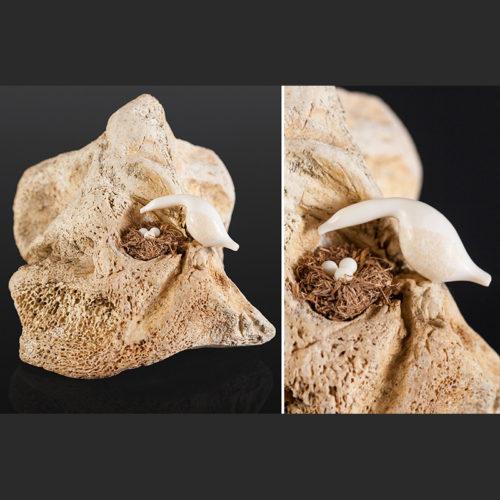 "checking the nest Elton Seppilu Fossil walrus bone, grass, ivory 5"" x 4"" x 4"""