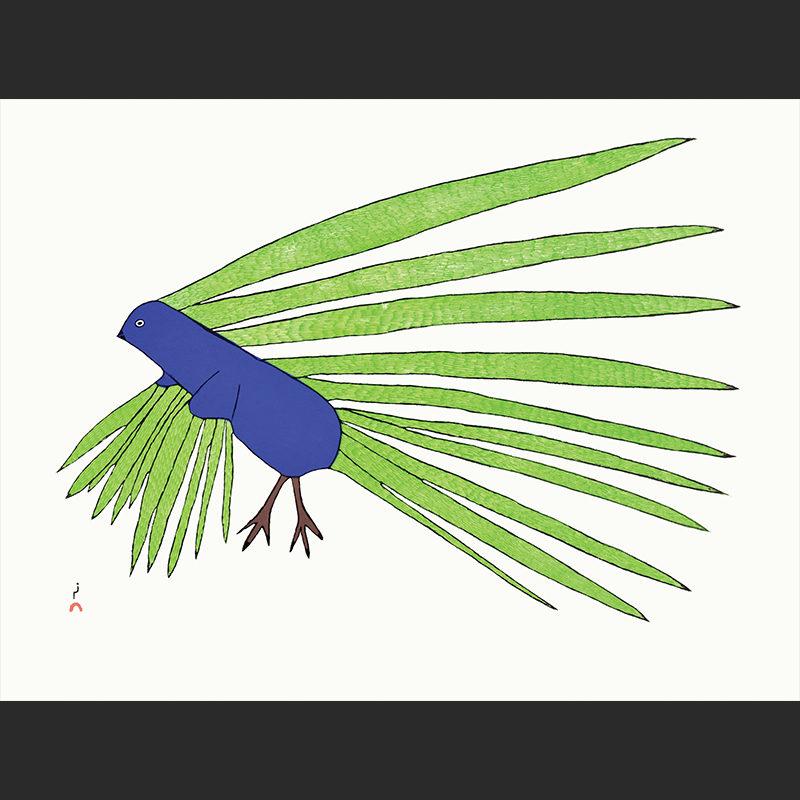 Dorset prints 2016 Kakulu Saggiaktok Green Feathers Stonecut 440