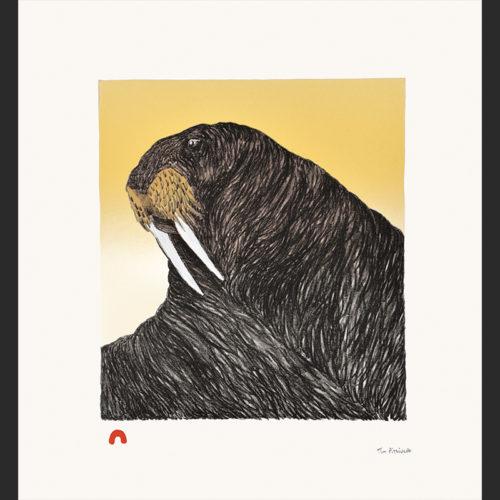 On Guard Tim Pitsiulak Lithograph cape dorset print collection 2016 400