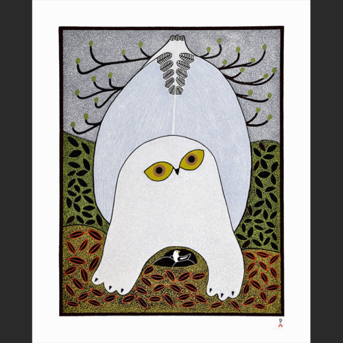 Opulent Owl Cape Dorset Print Collection 2015 Artist: Ningeokuluk Teevee Medium: Stonecut Paper: Handmade Washi Kizuki Kozo White Printer: Qiatsuq Niviaqsi Size: 28 x 22 inches (71.3 x 56.2 cm) Price: $1025