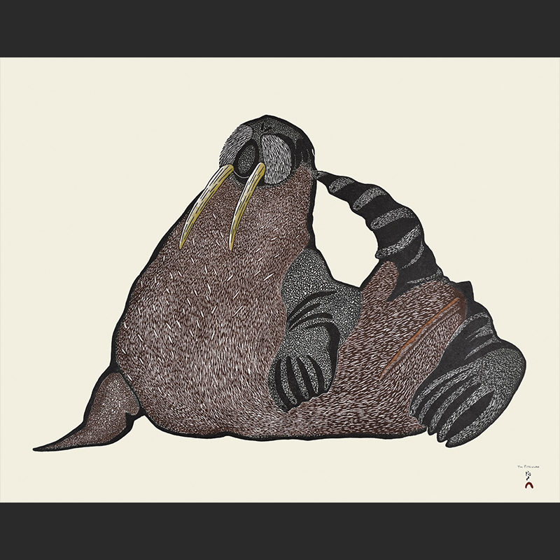 Tim Pitsiulak Scratching Walrus Stonecut & Stencil Cape Dorset Print Collection $640