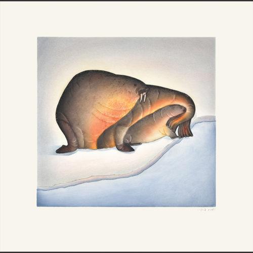 Sheltered Calf Pitseolak Niviaqsi inuit cape dorset print collection 2016