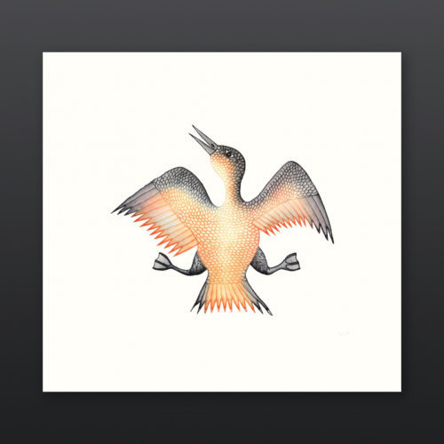 Jubilant Bird Cee Pootoogook Inuit Etching Aquatint Cape Dorset Prints 2017